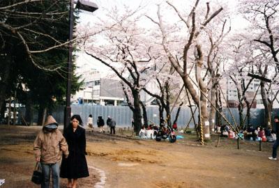 photo_95.jpg